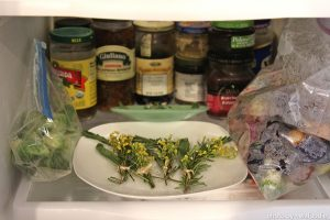 flowers in fridge